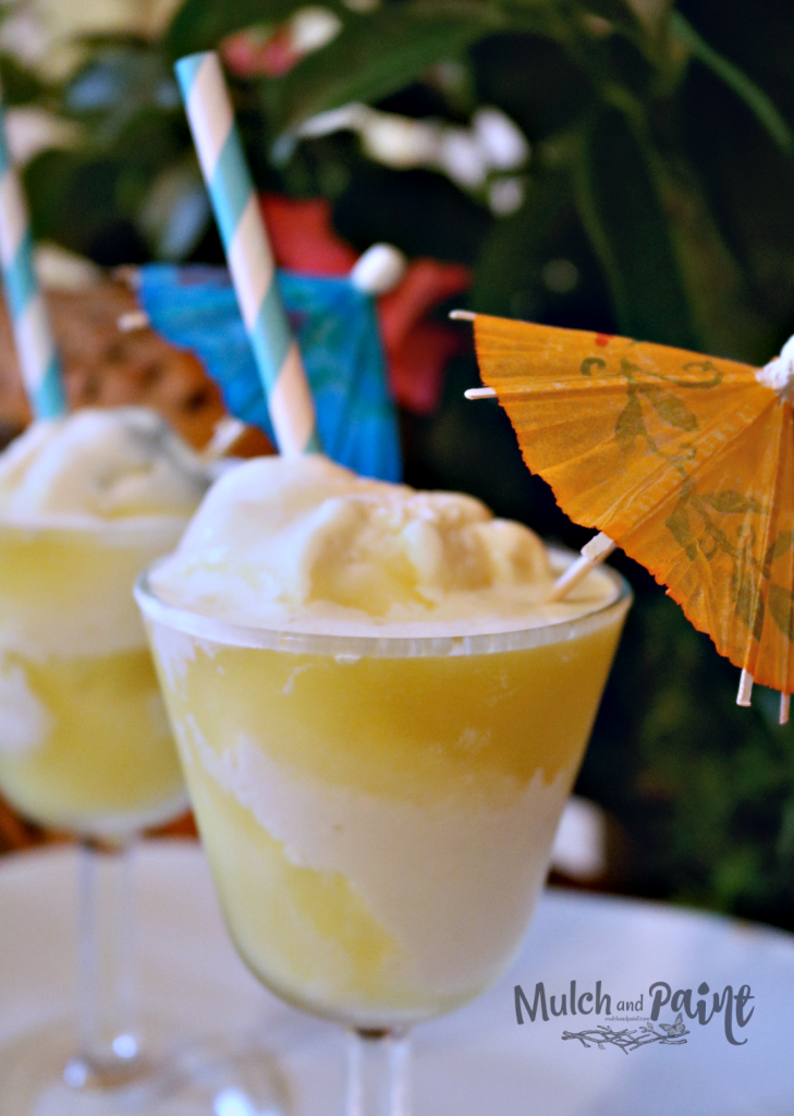 Disney Dole Whip, Dole Whip Recipe, Disney Pineapple Drink
