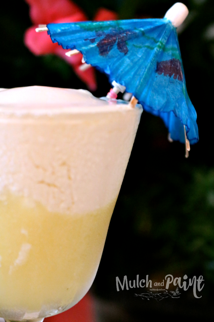 Disney Dole Whip, Dole Whipe Recipe, Disney Pineapple Drink