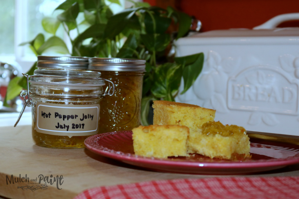 Hot Pepper Jelly, Habanero Pepper Jelly, Jelly and Cornbread