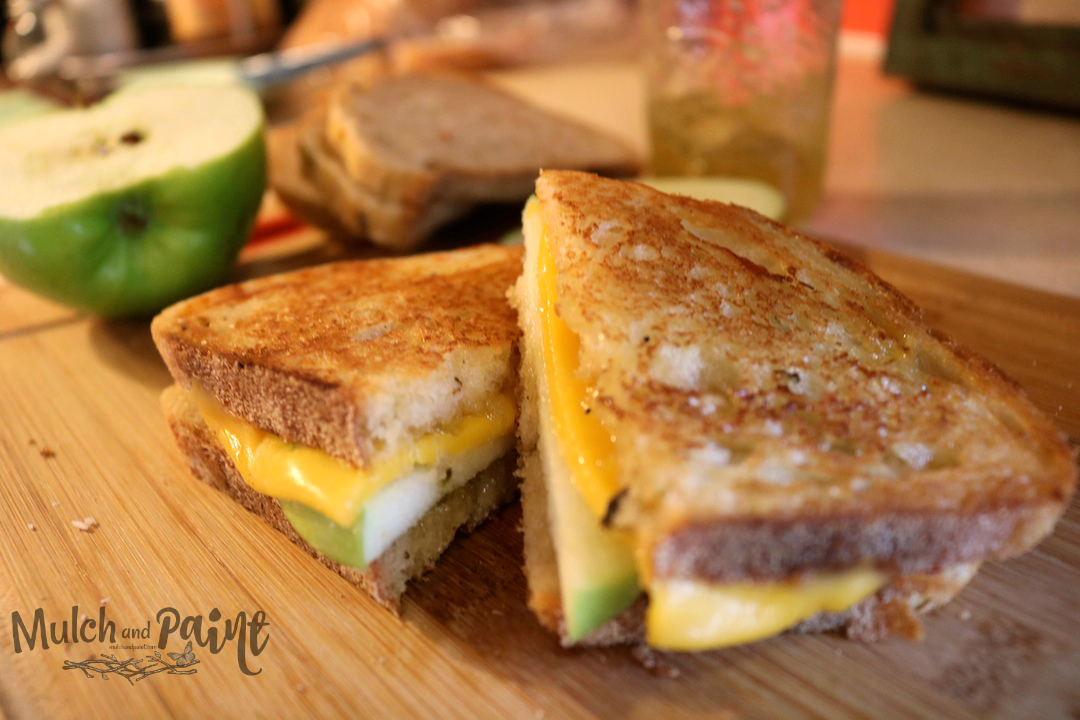 Hot Pepper Jelly and Apple Sandwich, Grilled Cheese with Apple, Grilled Apple and Cheese Sandwich Recipe