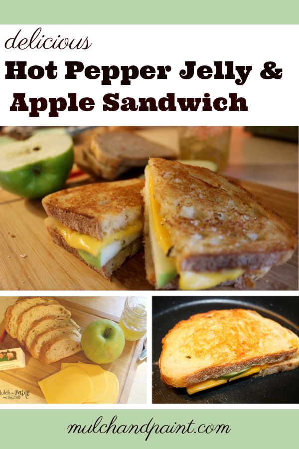 Hot Pepper Jelly and Apple Sandwich, Grilled Cheese and Apple Sandwich, Hot Pepper Jelly Recipes