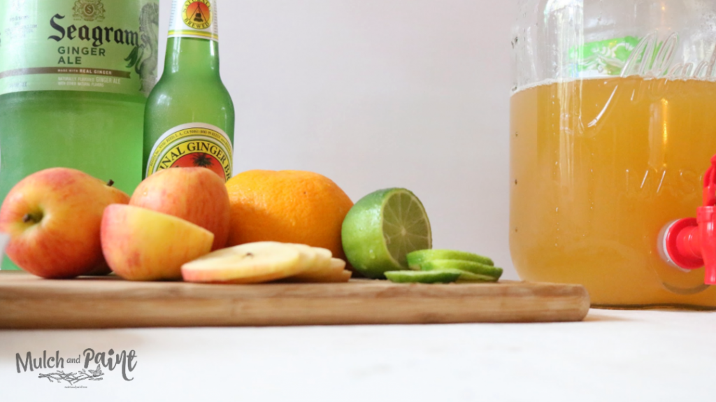 Apple Punch with citrus