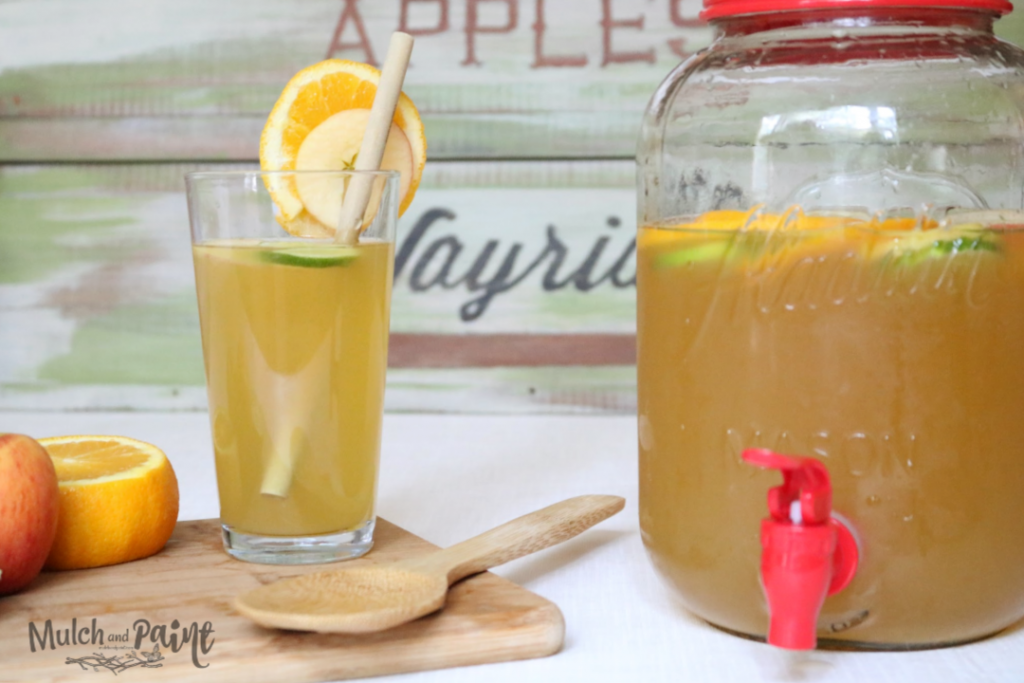 Apple Punch for the Taste of Fall when it's hot outside