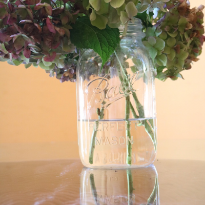 The Secret to Preserving Hydrangeas