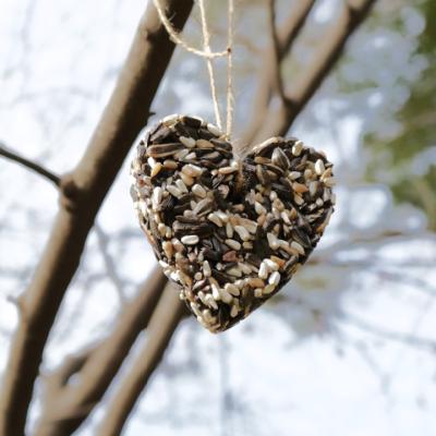Make Your own Bird Feeders