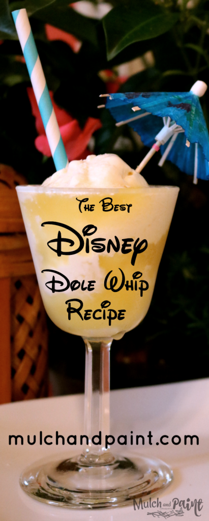Disney Dole Whip, Dole Whip Recipe, Disney Pineapple Dole Whip