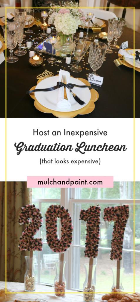 Graduation Luncheon, Graduation Party Ideas, Inexpensive Graduation Party, Dollar Store Graduation Party