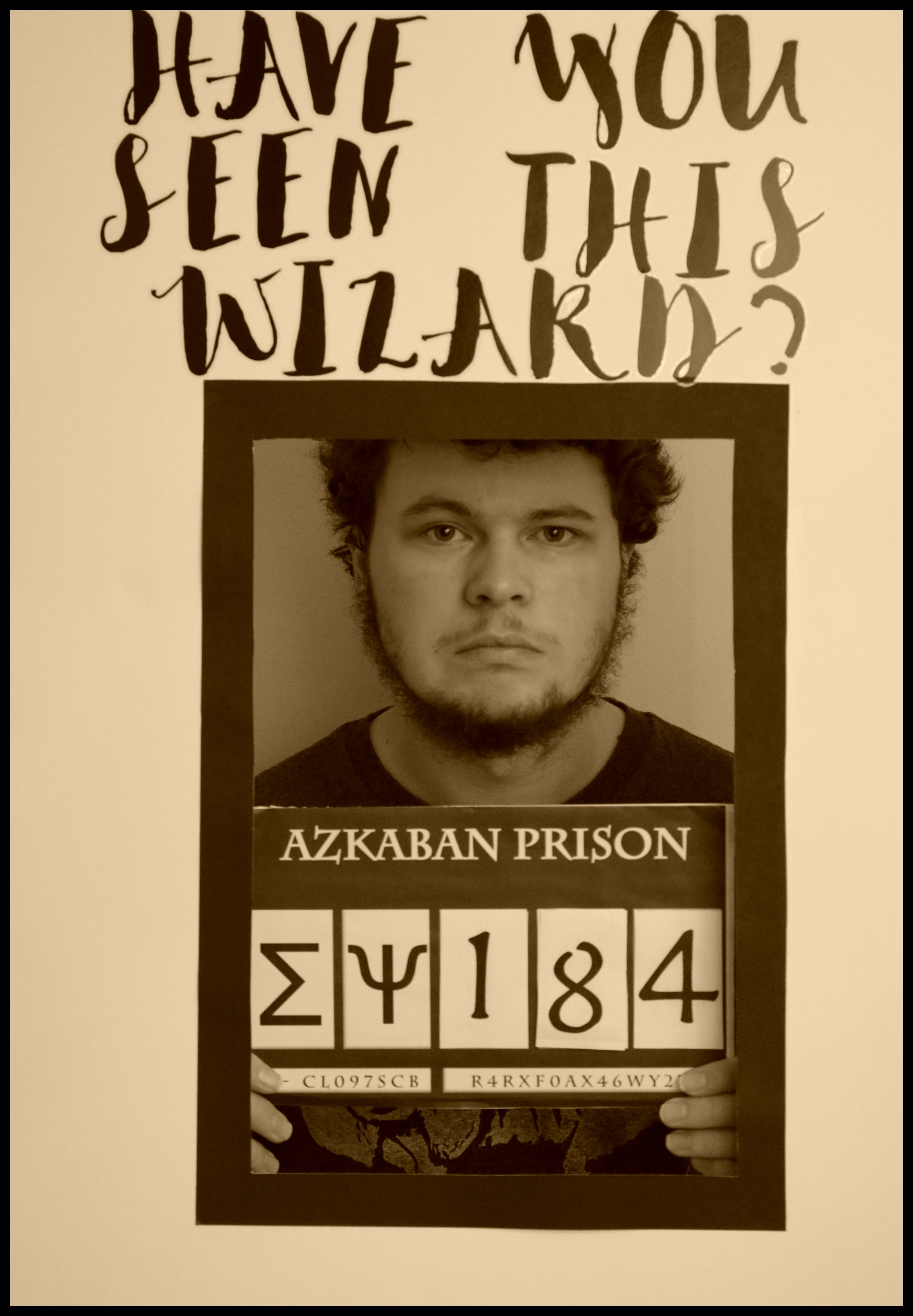 Harry Potter Have You Seen This Wizard Wanted Poster DIY