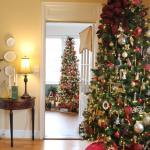Christmas Tree Tour 2019