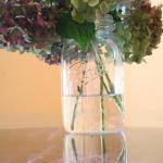 The Secret to Preserving Hydrangeas