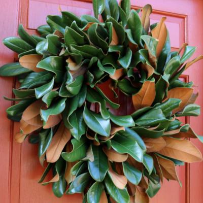DIY Fresh Magnolia Wreath